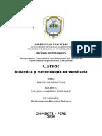 PRACTICA 01.Docx Maestria
