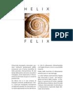 Helix Felix