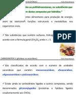 1_Carboidratos