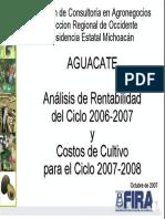 AGUACATE_Michoacan_-_Rentabilidad_2006-2007_Costos_2007-2008.pdf