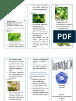 Leaflet Tanaman Obat DM