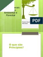 Principios_gerais_de_direito_ambiental_e_florestal.pptx