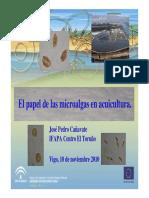 Papel de la micro alga en acuicultura