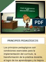 Trabajo Del Plan de Estudios 2011