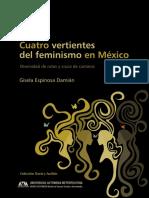 Espinosa Damián - Cuatro Vertientes