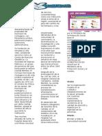 Diseño de Pagina