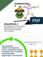 Homeostasis Kelompok 2 Kimia B