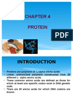 Chapter 3 Protein
