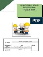 Seguridad y Salud Ocupacional informe