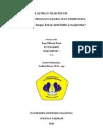 Laporan Praktikum Salep dengan bahan aktif Sulfur Pp