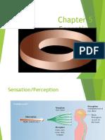 chap 5 sensation vision