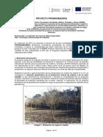 Resumen Anualidad 1 proyecto PROINNOMADERA