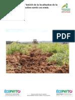 Synthèse Essai fertilisation azotée localisée