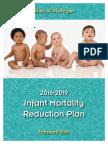 Michigan infant mortality reduction plan
