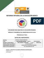 Portafolio_modulo_2_Profra_Teodosia_Vazquez_R_