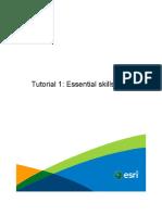 Tutorial 1 Essential Skills City Engine