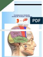 Nueva Medicina Constelaciones Cerebrales Corteza No Territorial