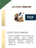 Ciclo_vital_familiar [Modo de Compatibilidad] (1)