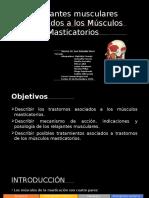 Power- Relajantes Musculares Asociados a Los Musculos Masticatorios