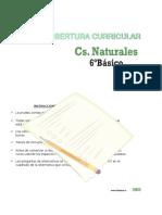 Cobertura Curricular Ciencias 6basico 2013