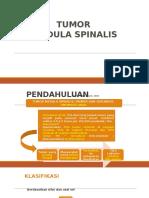 K32 - Tumor Medula Spinalis