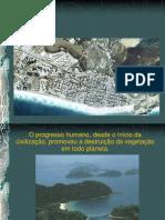 Histórico Das Áreas Verdes
