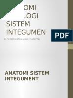 Anatomi Dan Fisiologi Integumen Ppt