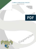 Filial Ayacucho (1).doc