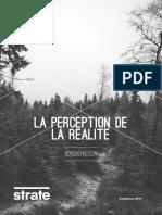 Husson_Adrien_PerceptionDeLaRealite.pdf