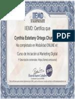 Certificado Iniciación Al Marketing