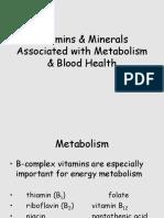 VitMin Metabolism