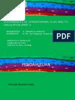 disturbances of Cerebrospinal Fluid and Its Circulation