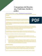 Principales Concepciones Del Derecho Iusnaturalismo Positivismo Realismo