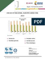 Cifras estadísticas producción de carne