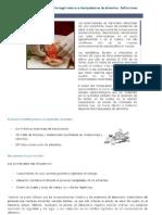 1. Enfermedades Transmitidas Por Los Alimentos