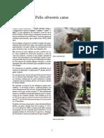 Felis silvestris catus.pdf