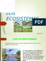 Todo Sobre Ecosistemas