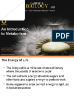 BSC 2010 Ch 8 Lecture Presents Metabolism