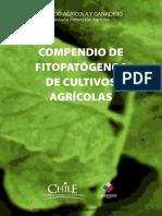 Compendio de Fitopatógenos de Cultivos Agrícolas