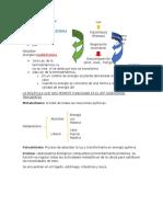 BIOLOGIA REPASO 2