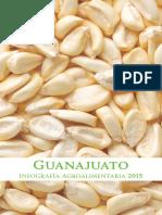 Guanajuato Infografia Agroalimentaria 2015