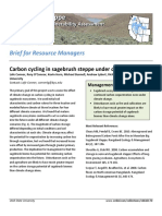 Carbon cycling in sagebrush steppe under climate change
