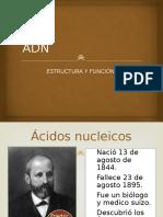clase adn.pptx