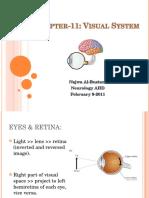Visual System - Albustani