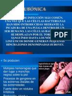 ROSARIO.pptx