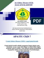 PPT CKD.ppt