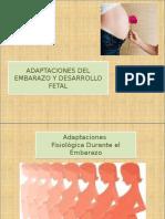 Adapctacion Fisiologica en El Embarazo - Copia