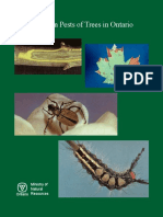 Common Pests of Trees in Ontario (1991)