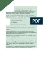 Osteomielitis aguda.docx