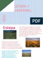 Estepa y Chaparral